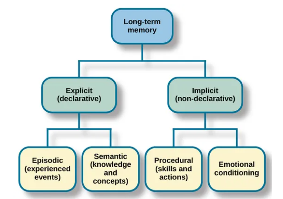 The Memory Systems